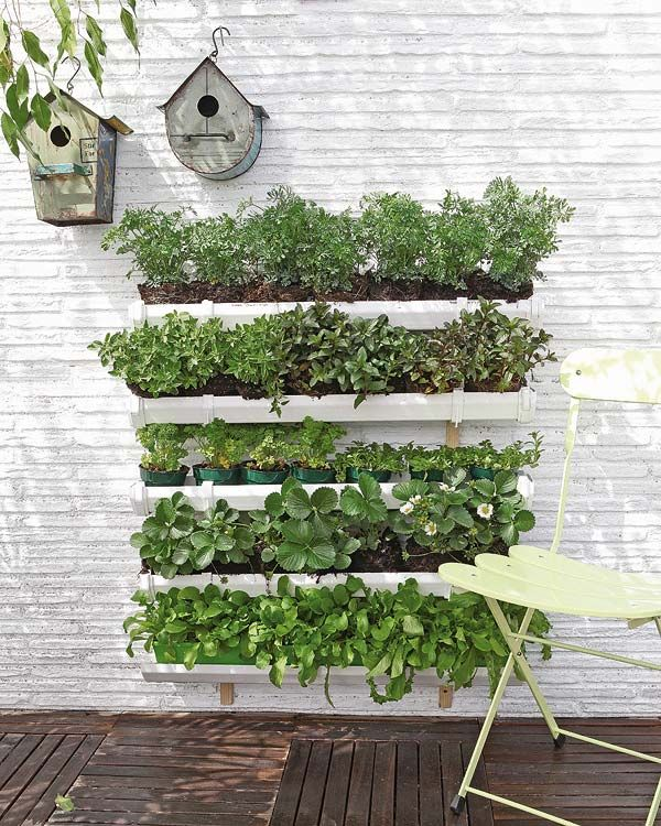 Cute for herbs, lettuce, etc. DIY: vertical garden (video) Mind you its not in English but the pic still gives you a good idea.