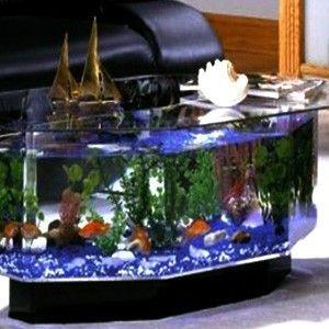 the 25+ best fish tank coffee table ideas on pinterest | amazing