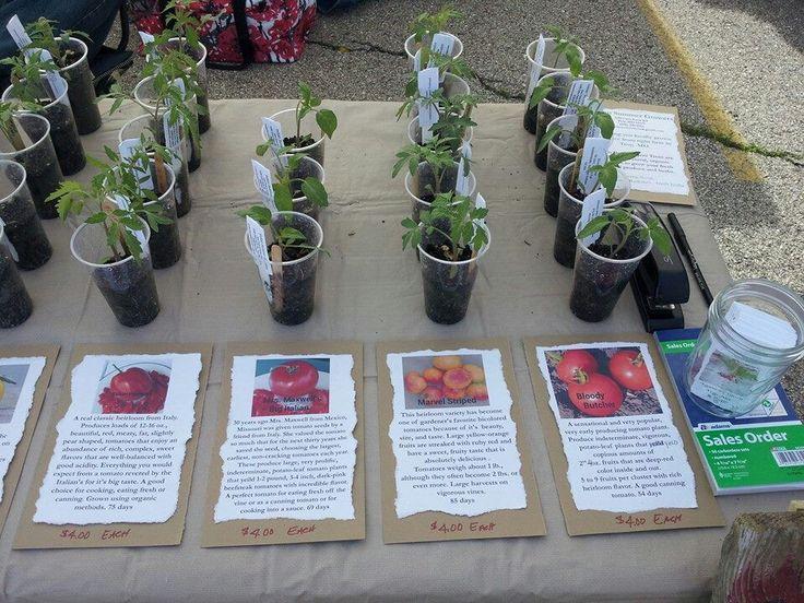 My first farmers market display
