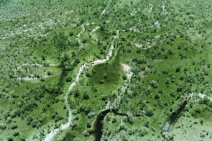 The biodiverse Kakadu National Park east of Darwin from [i]Condé Nast Traveller[/i], December 2015
