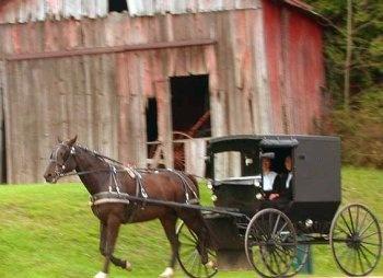 Amish Mennonites .. PA