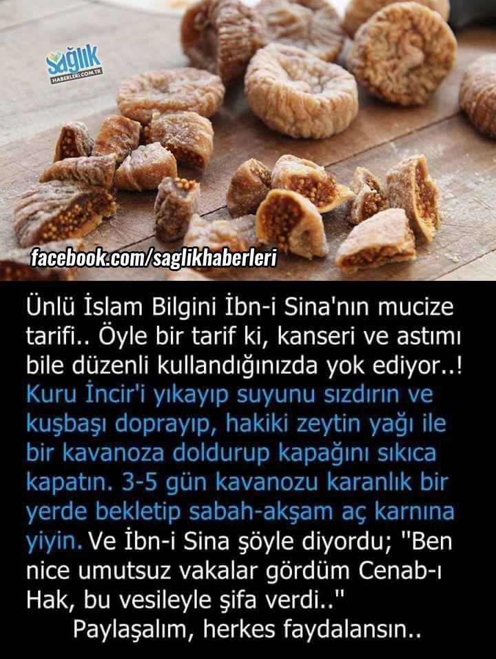 Ünlü İslam Bilgini İbn-i Sina'