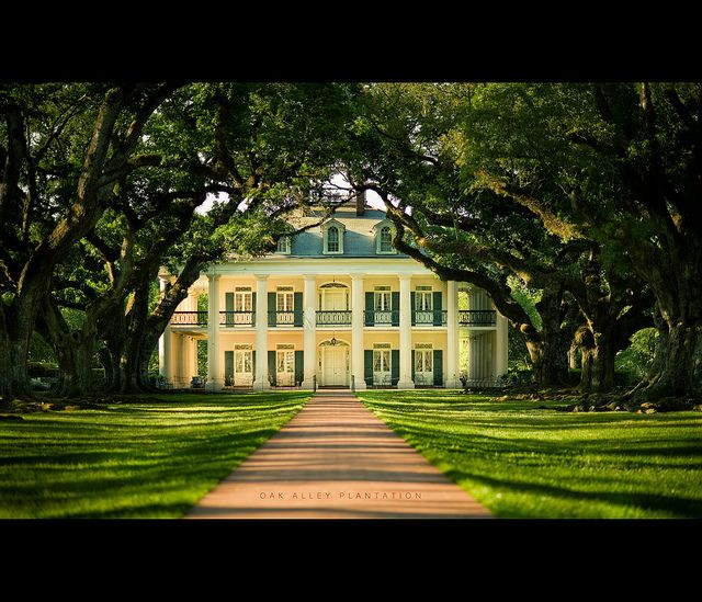 17 best images about oak alley plantation ms on for New homes in mississippi