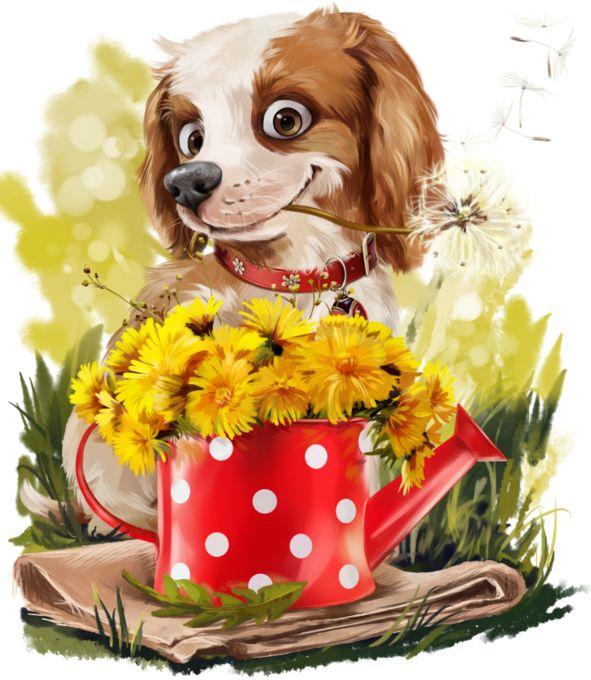 слои животные с цветами гифки смешные книга, которую читатели