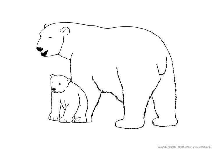 eisbär zum ausmalen  zeichnen  tierbilder zum ausmalen