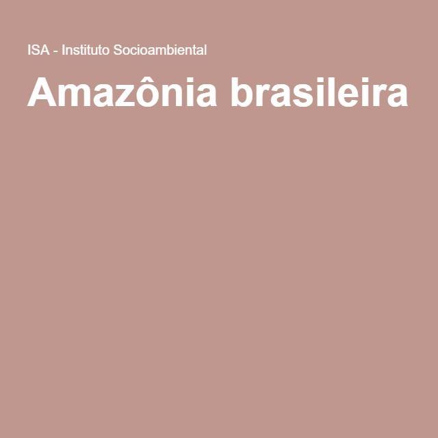 Há cerca de 30 mil espécies vegetais, 1,8 mil de peixes, 399 de mamíferos, 1,3 mil de aves, 284 de répteis, 250 de anfíbios. No bioma também está a maior bacia hidrográfica do mundo, que ocupa cerca de 6 milhões de km2 e tem 1.100 afluentes. O rio Amazonas, maior da região, lança a cada segundo cerca de 175 milhões de litros d'água no Oceano Atlântico. De acordo com o Atlas da Raisg, 58,8% do território brasileiro é amazônico: AM, PA, MT, AC, RO, RR, parte de TO e parte do MA.