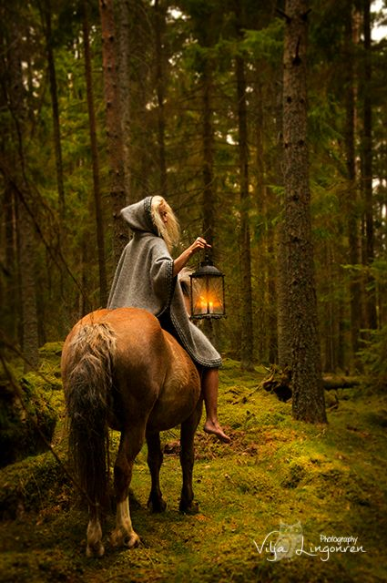 "m-e-d-i-e-v-a-l-d-r-e-a-m-s: "" •  The enchanted forest, from Swedish folklore photographer Photographer Vilja Lingonren. She says ""Gnomes and trolls top my list of favorite creatures. Small, but powerful. Ingenious little beings that make life more..."