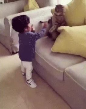 """Avoidance!  The way the cat slightly taps the kid like """"no."""""""