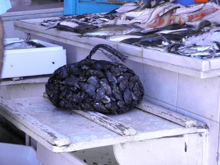 Fish   Market in Aigina Islnad
