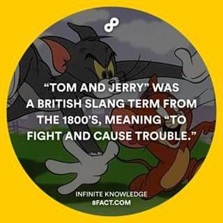 #tomandjerry #tomejerry #slang #quote #8fact #animation #animação