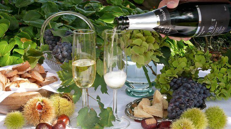 Das Valtellina zu erleben bedeutet, seine typischen Produkte zu geniessen, wie die DOCG-Weine, die aus den Nebbiolo-Trauben gekeltert werden (Sassella, Grumello, Inferno, Valgella, Maroggia, Valtellina Superiore und Sforzato) aber auch eine Vielzahl von anderen spannenden Traubensorten, wie Rossola, Pignola, Cabernet Sauvignon, Chardonnay, Sauvignon Blanc, Pinot Bianco etc.
