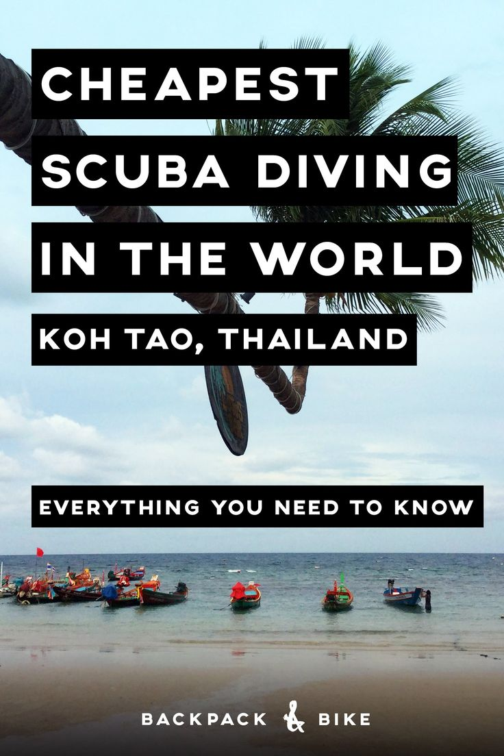 Koh Tao, Thailand is the cheapest place in the world to get your scuba diving license, but is it worth it? What does it cost? Let us answer all your diving questions. http://www.deepbluediving.org/mares-puck-pro-dive-computer-review/