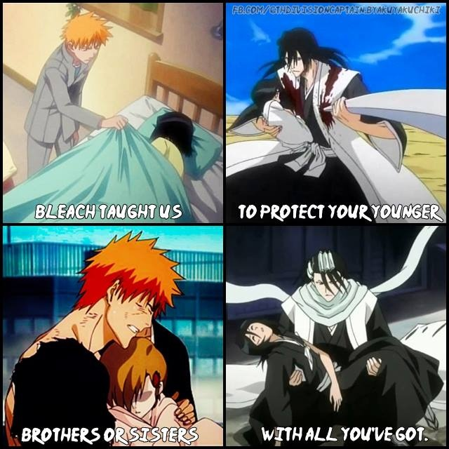 One of the reasons why I love Ichigo and Byakuya sama so much!! They are amazing aniki(older brothers)!!<3