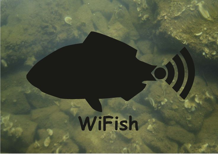 WiFish 2017