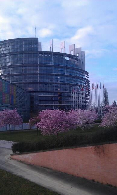 #parlamento #europeo