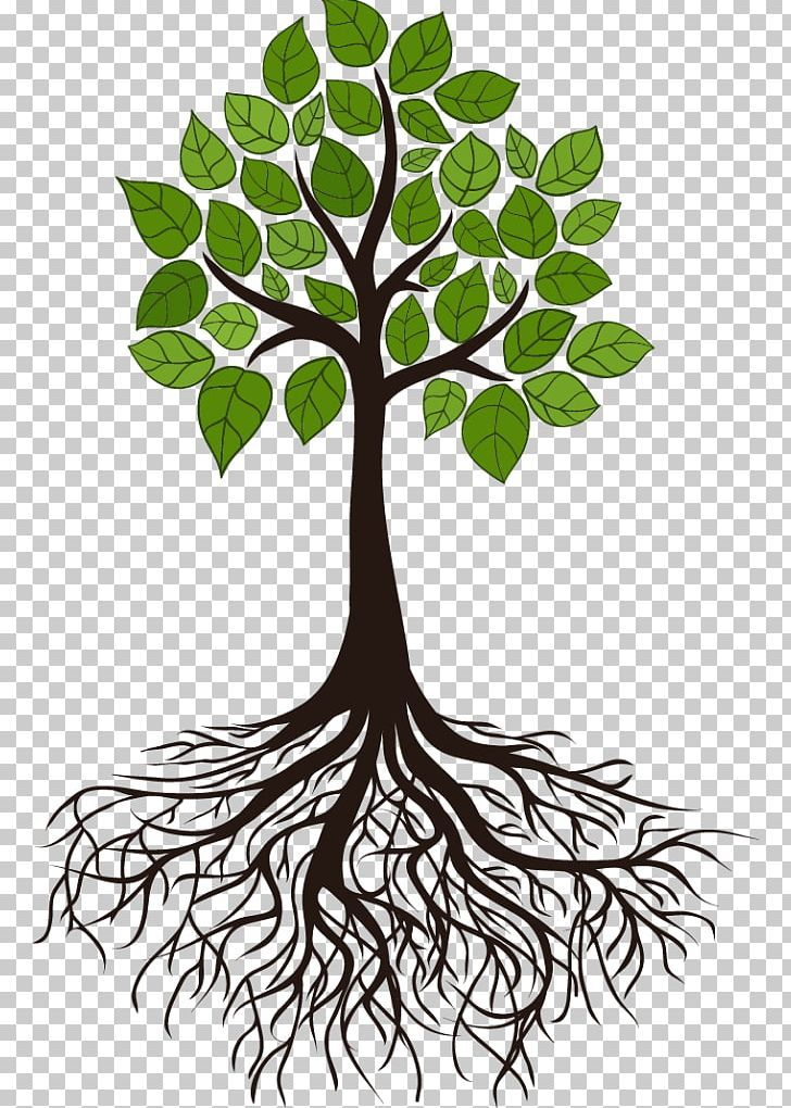 Tree Root Branch Png Black And White Branch Clip Art Flora Flower Tree Roots Tattoo Tree Roots Tree
