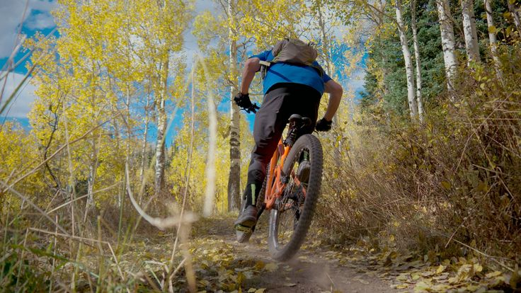 Aspen grove at the top.- Dog Lake Mountain Bike Ride: Great Western Trail to Big Water Trail