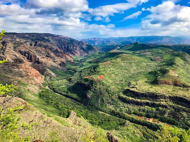 One of the most spectacular views I've seen in Kauai, Hawaii 😍🍃 #Hawaii #hawaiitravel #travel #traveling #traveler #travelblog #travelblogger #igtravel #instatravel #view #amazing #canyon #kauai #igdaily #instagood #instagram #travelphotography #travelgram #travelingram #lonelyplanet #travelpic
