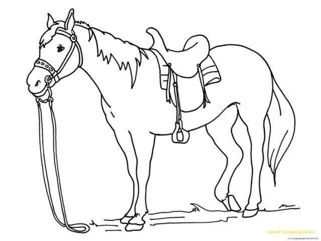 Awesome Picture Of Free Horse Coloring Pages Albanysinsanity Com Horse Coloring Horse Coloring Pages Animal Coloring Pages