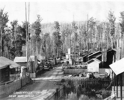 At first Marysville was a logging town - home to some tough characters. www.marysvilletourism.com