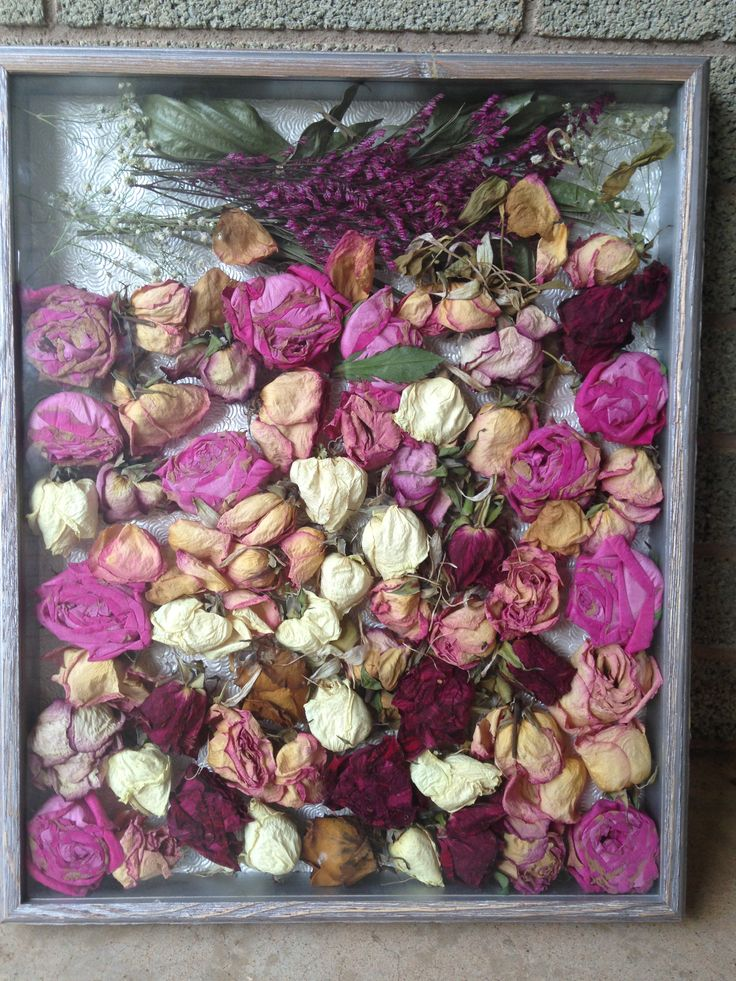 12 best Dried Flowers in Shadow boxes images on Pinterest | Dried ...