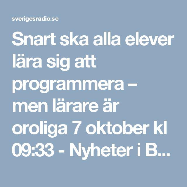 Snart ska alla elever lära sig att programmera – men lärare är oroliga 7 oktober kl 09:33 - Nyheter i Barnradion | Sveriges Radio