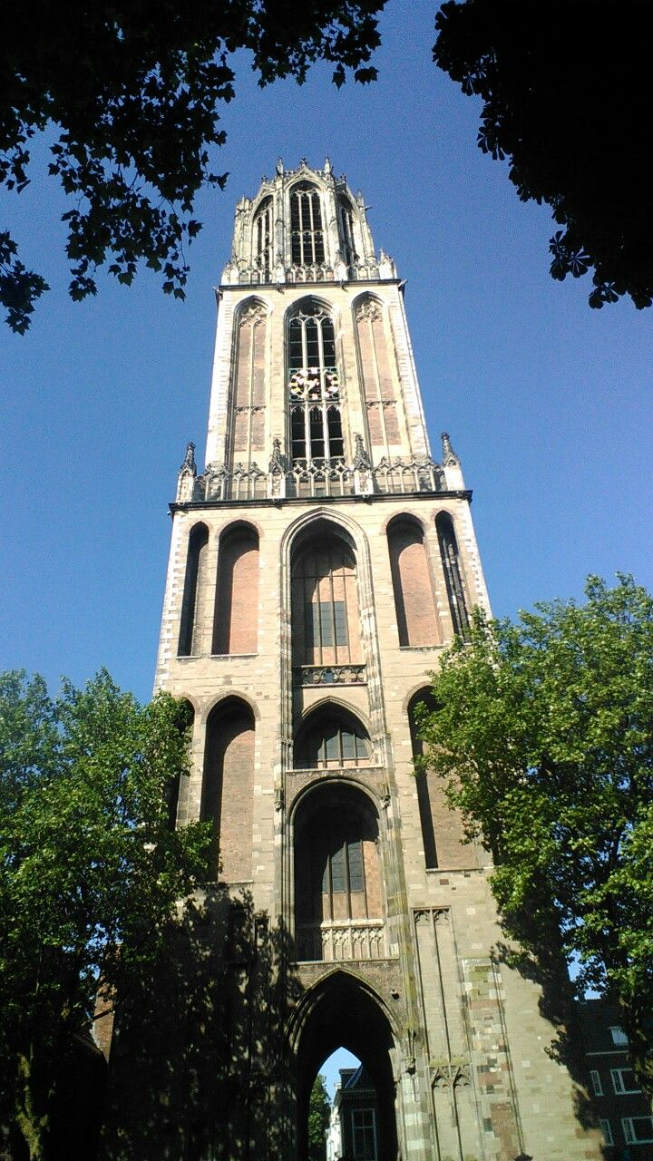 De Dom van Utrecht in 2016