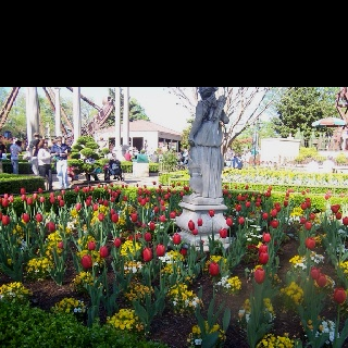 365 Best Images About Busch Gardens Williamsburg On Pinterest Loch Ness Monster Virginia And