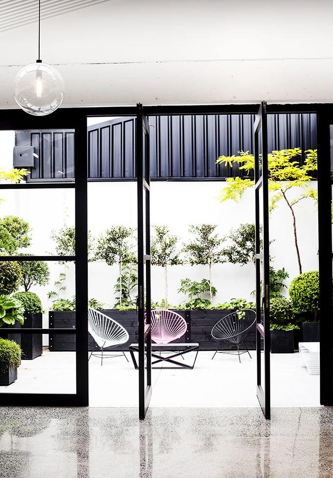 Contemporary courtyard at Mildred Co, Auckland | contemporary courtyard - black steel windows - room with a view - indoor outdoor flow - chairs outdoor furniture - tree silhoutte - black pots planters - topiary buxus boxwood balls