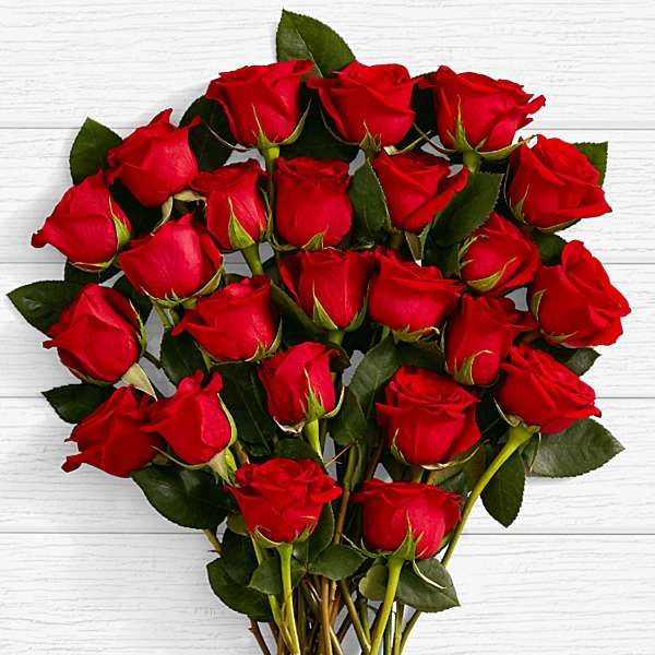 3d Rose Wallpapers Free Download Google Search Online Flower Delivery Red Rose Flower Flower Delivery