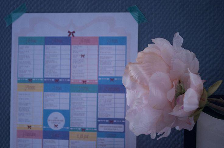 Il y a quelques jours de ça je vous proposez une liste de questions à se poser pendant la préparation d'un mariage, avec dedans 5 petites affiches A4 regroupant les interrogations qu'une mariée peux avoir et auxquelles il faut penser avant le joli jour. Aujourd'hui pour parfaire ce kit de la future mariée très bien …