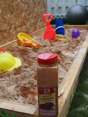2015 Keep bugs out of your kids' sandbox this summer with a simple, all-natural bug repellant: cinnamon! Just mix a cup of cinnamon in with the sand and it will repel ants, centipedes, flies, and even neighborhood cats. Note: Some children have allergies to cinnamon, so if your child has lots of sandbox playmates or may have a cinnamon allergy, this tip isn't for you!