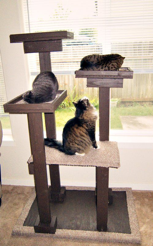 280 best images about cat trees scratchers on for Castle cat tower