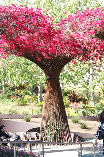 rebar bougainvillea structure at the Getty Museum