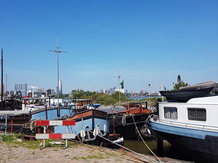 Uitzicht op de stad Rotterdam