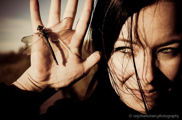 Dragonfly resting in woman's palm