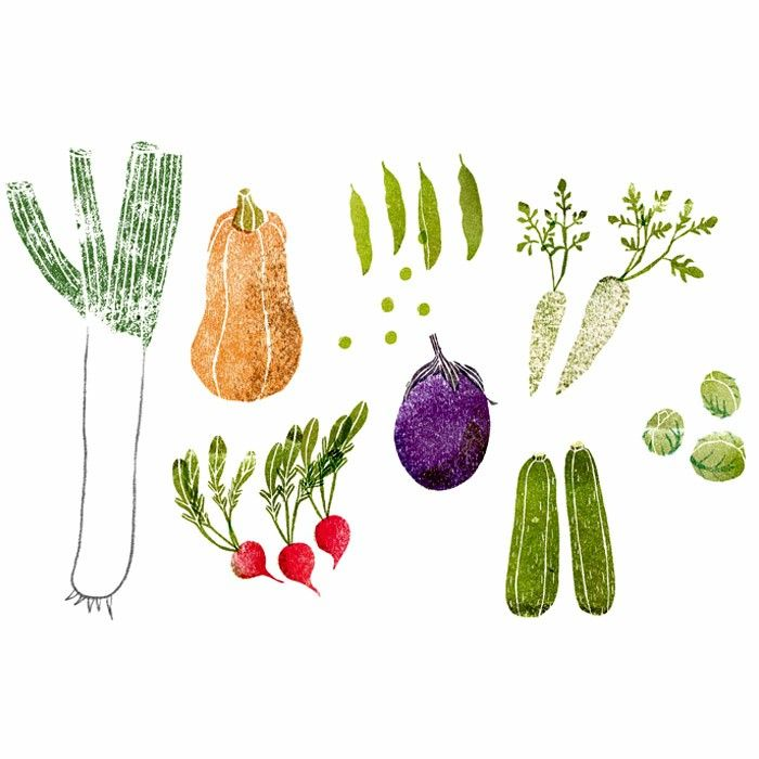 17 Best Images About Regrow Veggies On Pinterest: 17 Best Images About Vegetable Illustration On Pinterest