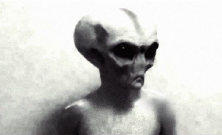 Enigma existenței extratereștrilor există de mult timp, și se pare că nu doar printre adepții teoriilor conspirației. Agenția americană CIA a dat publicității mai multe dosare secrete din anii 1950, legate de farfurii zburătoare și presupuse întâlniri cu extratereștri. Imaginile au fost prima oară publicate în 1978, și conțin cel puțin 100 de cazuri considerate …