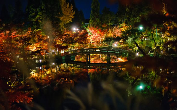 Japanese Garden At Night image result for japanese garden night | temple grounds