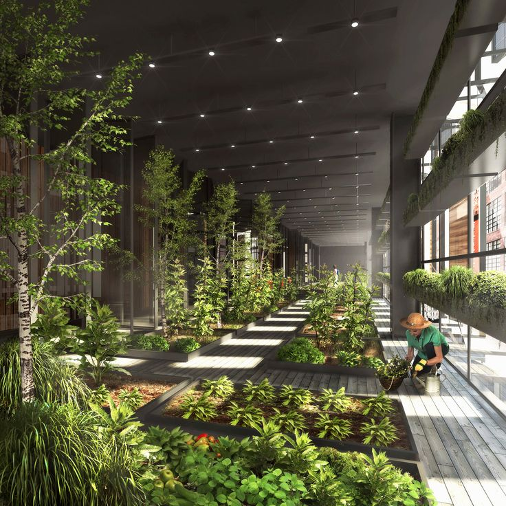 // New York City Vertical Farm by Natural Light Design Studio