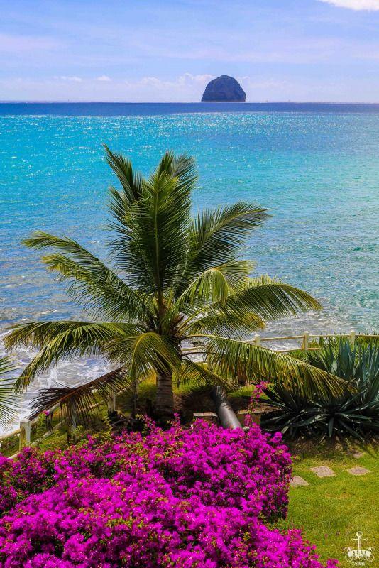 "Tropical Colors of ""le Diamant"" Martinique"