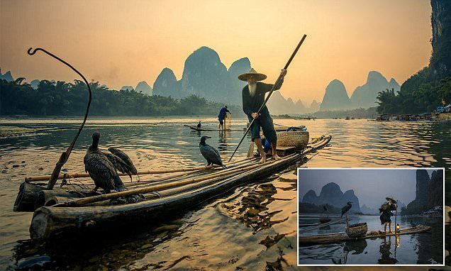 Images capture Chinese fisherman using BIRDS to snare their supper