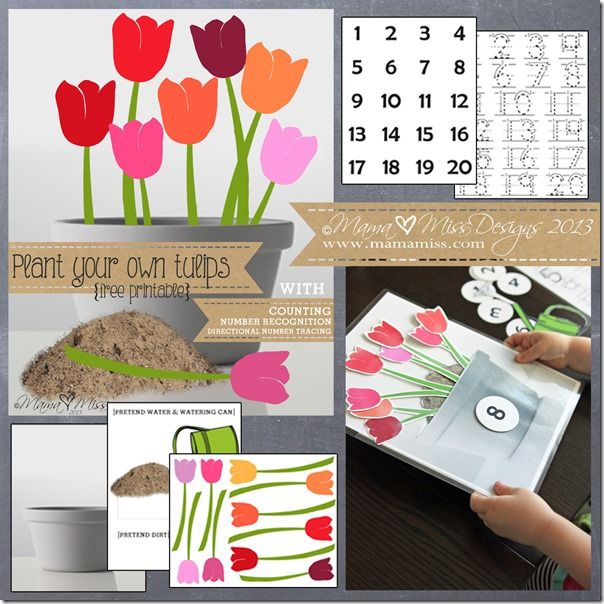 Plant Your Own Tulips Free Counting & Number Recognition Printable from Mama Miss