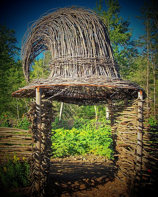 The Witch's hat Perfect as entrance to a large herb garden!
