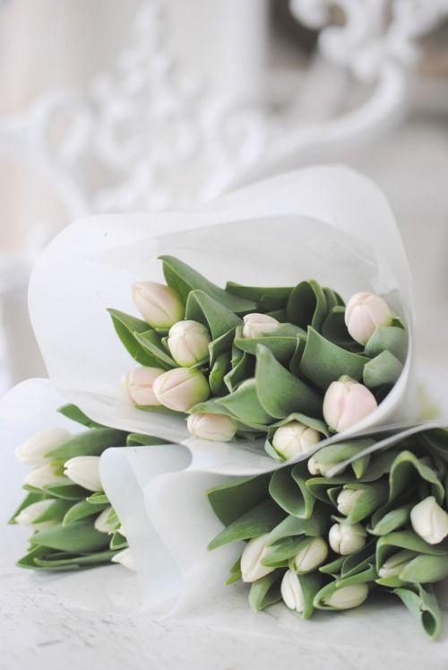 Tulips, tulips...: White Flowers, Wedding, White Tulips, Flower Power, Bloom, Things, Spring, Floral, Flower