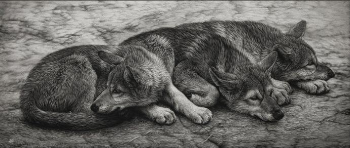 Hudozhnitsa-Cristina-Penescu.-Grattazh-Wolf-Pups.-8x20-dyuymov
