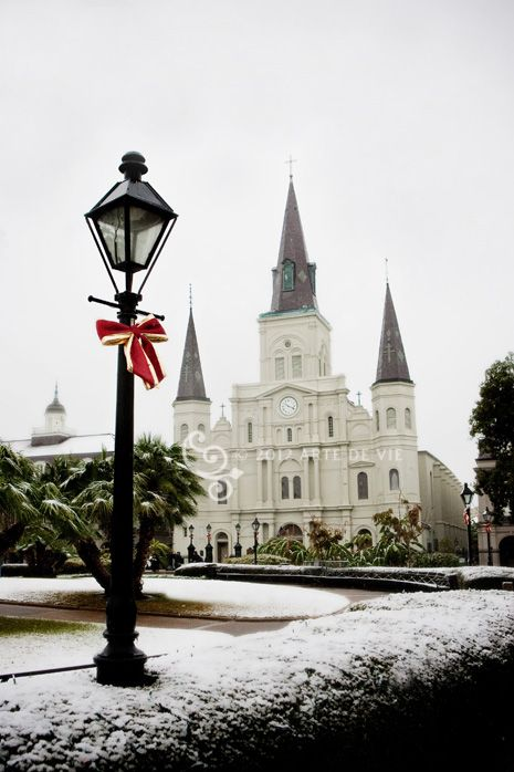 christmas in new orleans christmas gift idea perfect gift for someone that loves christmas