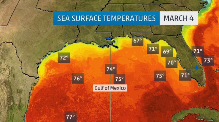 Gulf of Mexico Warmth Could Lead to More Intense Severe Season, But Not More Hurricanes   The Weather Channel