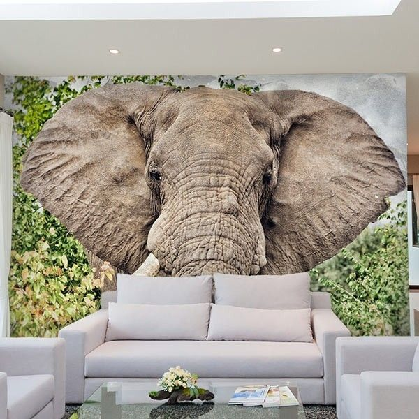 Photo Mural Wallpaper of Elephant Ear Flaps