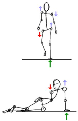 simple basic instructions starting from the stick figure to more developed models